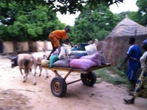 Farmers (credit - Andrés Quinche)_comp