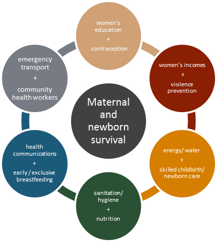 Figure 6_The Celebrity Couples of Maternal and Newborn Survival_EN full