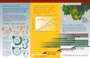 Integrated health and microfinance infographic